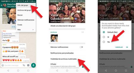 Visibilidad Whatsapp