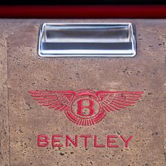 Foto 31 de 36 de la galería bentley-bentayga-falconry en Motorpasión