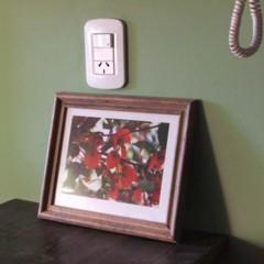 Foto 5 de 12 de la galería ensenanos-tu-casa-la-casa-de-leda-ii en Decoesfera