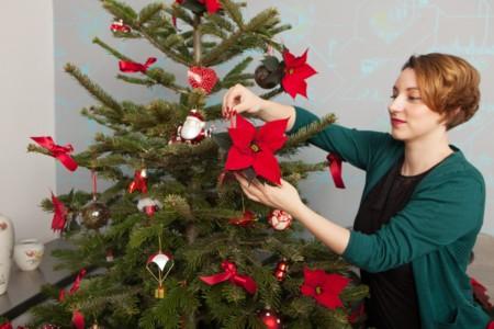 4 Von 4 Christbaumkugel Mit Dem Weihnachtsstern Fertig Es