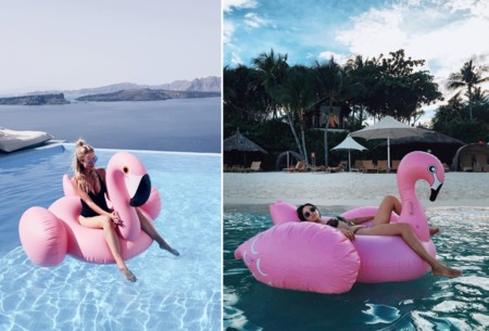 Flamingo Flotador Blogger