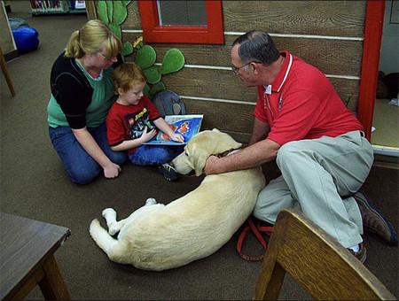 'Un amigo en casa': terapia asistida con perros para niños con discapacidad