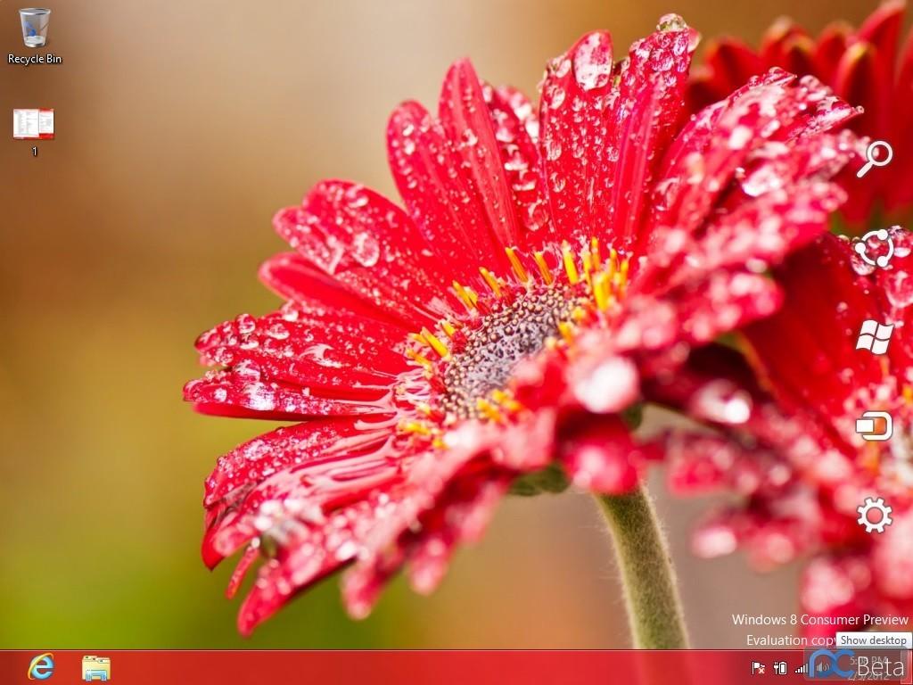 Foto de Windows 8 Consumer Preview Build 8220 (10/18)