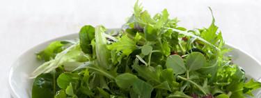 Época de hojas verdes: aprovecha sus vitaminas y minerales