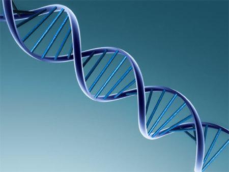 Activación genética para tener un cuerpo a la carta