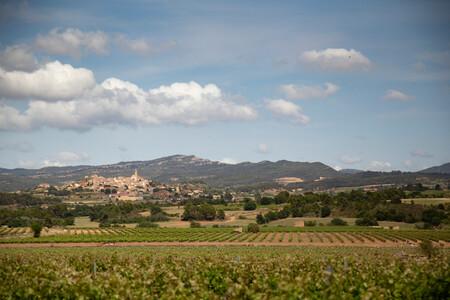 Un viaje a Tarragona para conocer los vinos de Conca de Barberá: redescubriendo la uva trepat más allá del rosado