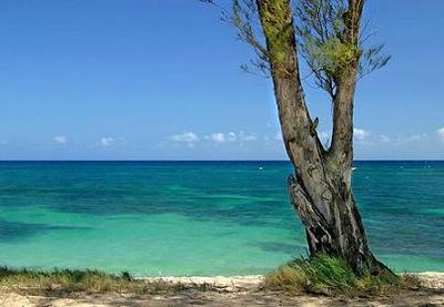 Por qué nos gusta... La isla (Perdidos)