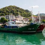 Lekeitio, uno de mis puertos favoritos en Euskadi