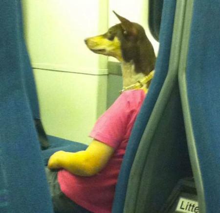 La persona con cara de perro