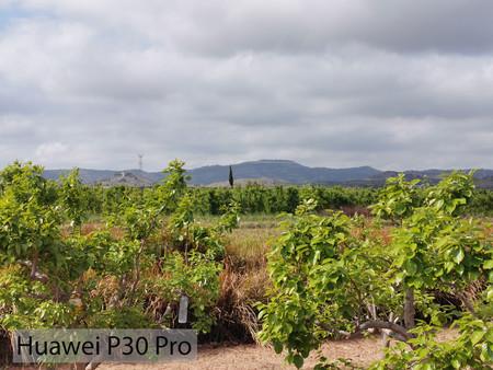 Huawei P30 Pro Zoom 03