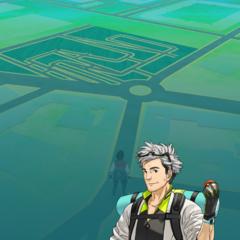 Foto 8 de 12 de la galería pokemon-go en Xataka