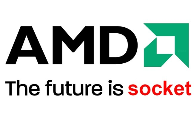 AMD logo socketed