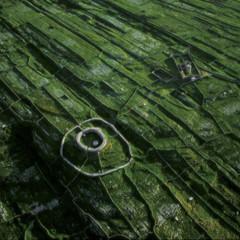 Foto 29 de 37 de la galería la-tierra-desde-el-cielo en Xataka Foto