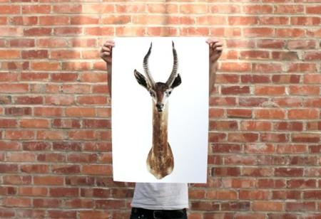 ¿Te gustan las cabezas de animal para decorar? Mejor que sean pintadas