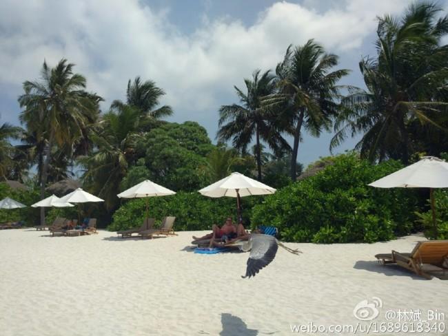 Foto2 Xiaomi Mi5