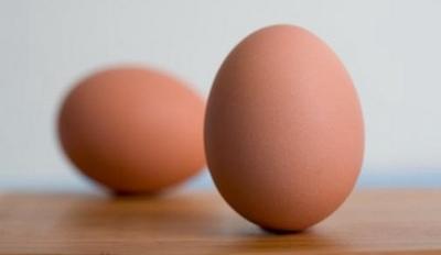 Técnicas básicas de cocina : Cocinando huevos (I)