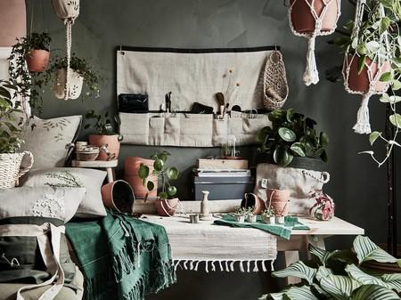 Del pequeño huerto urbano a las plantas colgantes: cuatro ideas para decorar tu cocina con plantas