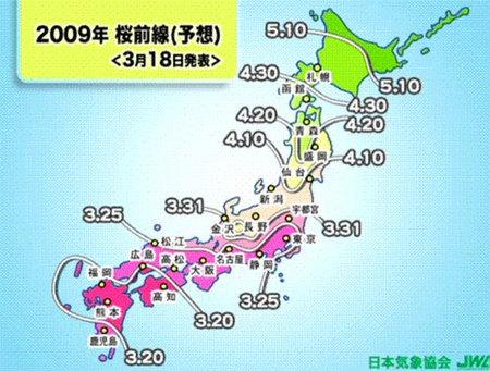 Japón: mapa de los cerezos en flor