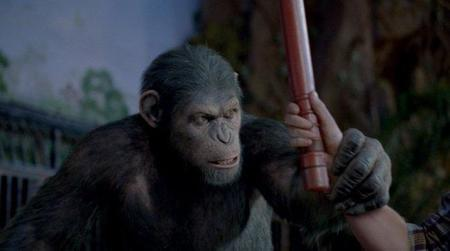 rise-of-the-planet-of-the-apes-movie-image-03.jpg
