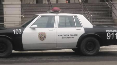 Racoon1