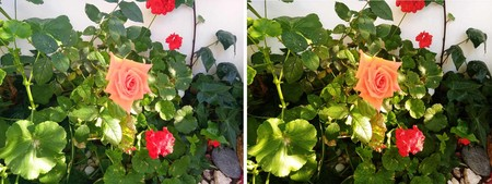 Lg K40 Flores