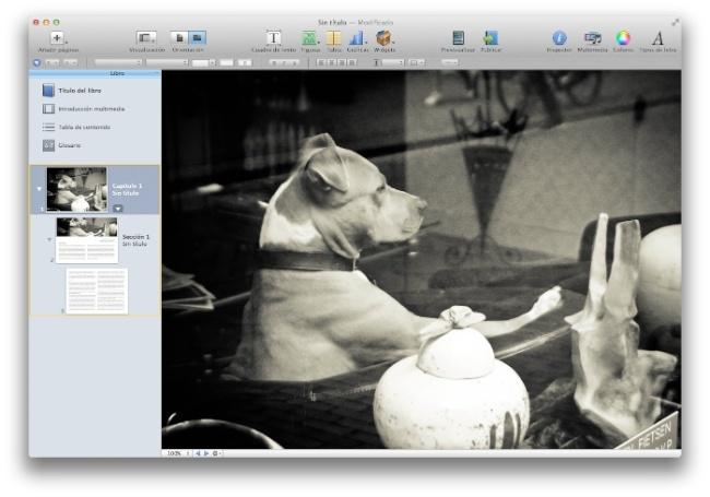 Dog, album iBooks Author