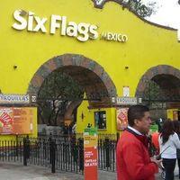 Six Flags en Ciudad de México estaba exhibiendo a 62 reptiles y un anfibio sin acreditar su procedencia legal