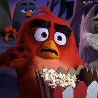 'Angry Birds. La película', tráiler nuevo y sorprendentemente divertido
