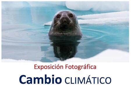 """""""Cambio climático"""", una exposición de fotografía al aire libre en el parque del Retiro"""