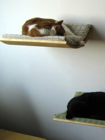 Camas de pared para mascotas