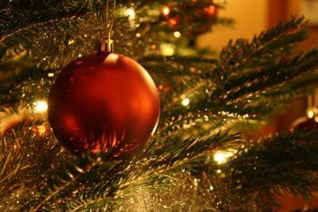 Prepárate para recibir las fiestas de fin de año con salud