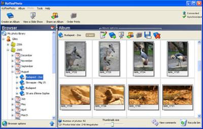 KoffeePhoto, servicio online para copias de seguridad