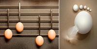 El huevo hecho arte, exposición en Guadalajara