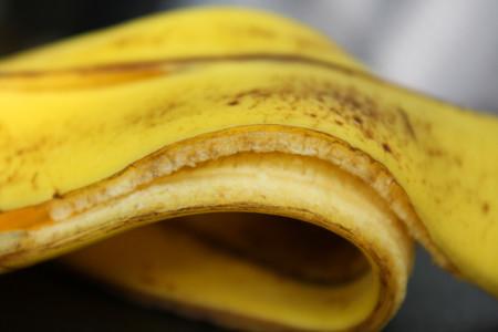 ¿Debemos de comernos las cáscaras de los plátanos?