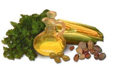Protege tus músculos con vitamina E