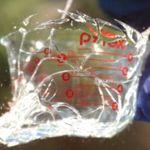 Lo que pasa cuando registras la rotura de un cristal a 340.000 fotogramas por segundo