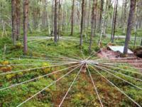 Estas extrañas estructuras están escuchando a la Tierra
