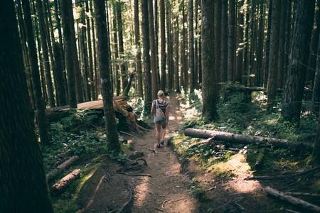 bosque-chica-senderismo