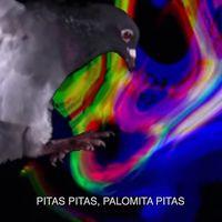Internet se une para hatear a las palomas compartiendo el último trap de Christian Flores