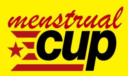 Cup Menstrual