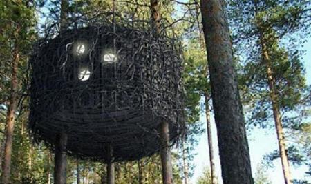 Suecia: inauguran un hotel con habitaciones suspendidas en los árboles