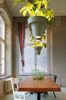 Luz combinada con plantas en las lámparas maceta de Roderick Vos