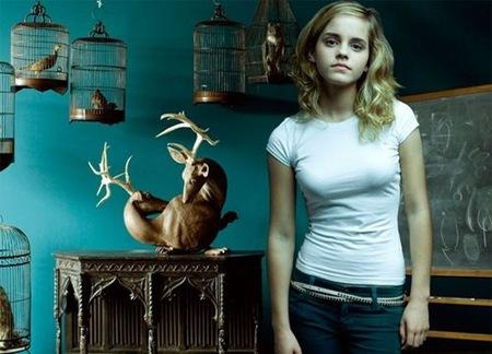 Emma Watson no quiere fanáticos como compañeros de habitación en la univerisdad