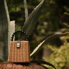 Foto 9 de 11 de la galería zara-wild-garden en Trendencias