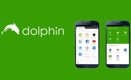 Dolphin Browser 650