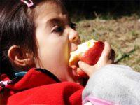 Buenos hábitos alimenticios desde la infancia para evitar problemas de salud futuros