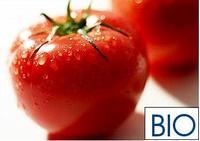 Razones del escaso consumo de alimentos ecológicos