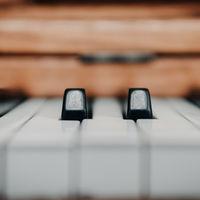 Dos músicos generaron con un algoritmo todas las melodías básicas posibles, luego las hicieron de dominio público