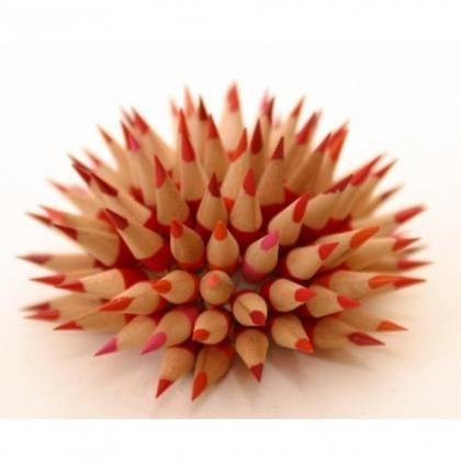 Erizo de lápices