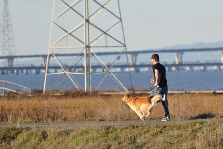 Corre con un perro
